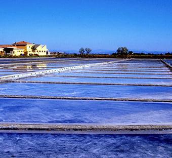 hotel flora bellaria territorio saline di cervia